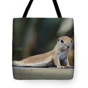 Yoga Ground Squirrel Style Tote Bag