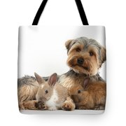 Yorkshire Terrier Dog And Baby Rabbits Tote Bag