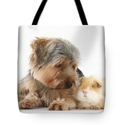 Yorkshire Terrier Dog And Guinea Pig Tote Bag