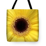 You Are My Sun Tote Bag