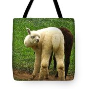 You Can't Sneak Up On Alpacas Tote Bag
