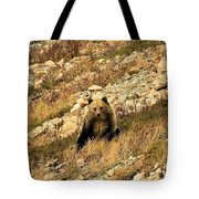 You Want My Photo? Tote Bag