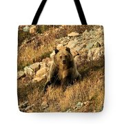 You Whistling At Me? Tote Bag