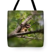 Young And Scared Tote Bag