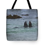 Young Elephant Seals Sparring Tote Bag