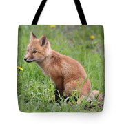 Young Fox Among The Dandelions Tote Bag
