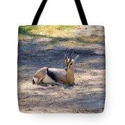 Young Ibex Tote Bag