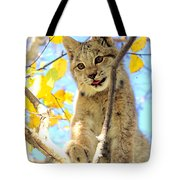 Young Lynx In A Tree Tote Bag