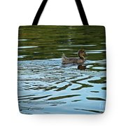 Young Male Garganey Tote Bag