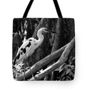 Young One Tote Bag