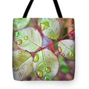 Young Rose Leaves Tote Bag