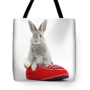 Young Silver Rabbit In A Knitted Slipper Tote Bag