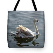 Young Swan Tote Bag