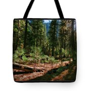 Young Trees Tote Bag