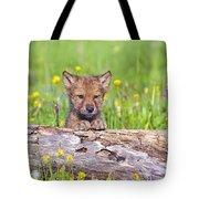 Young Wolf Cub Peering Over Log Tote Bag