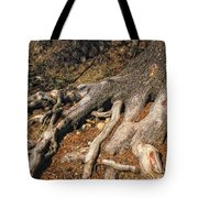 Your Roots Are Showing Tote Bag