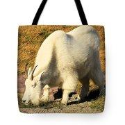 Yummmmmmmy Tote Bag