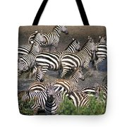 Zebra At Waterhole Tote Bag