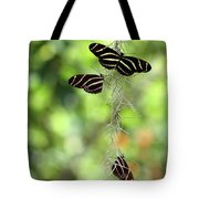 Zebra Butterflies Hanging Out Tote Bag