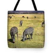 Zebra Grub Tote Bag