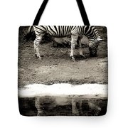 Zebra Reflection  Tote Bag
