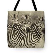Zebra Trio Tote Bag