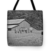 Zebras In San Simeon Tote Bag