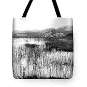 Zen Pond In Ireland Tote Bag