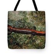 Zig-zag Salamander Tote Bag