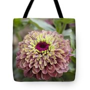 Zinnia Elegans Queen Red Lime Variety Tote Bag