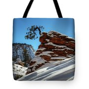 Zion National Park In Winter Tote Bag