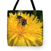 A Bee In A Dandelion Tote Bag