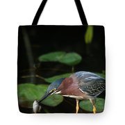 A Green Heron With Fish Tote Bag