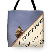 African Collared Dove 2 Tote Bag