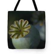 After The Flower 2 Tote Bag