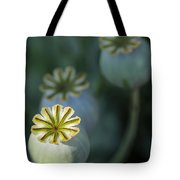 After The Flower 3 Tote Bag