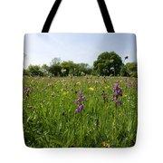 Ancient Hay Meadow Tote Bag
