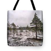 April Snow 1 Tote Bag