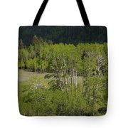 Aspen Meadows IIi Tote Bag