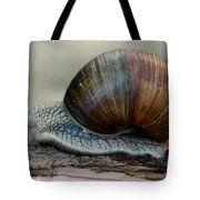 Burgundy Snail Tote Bag