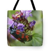Burnet Moth Tote Bag