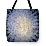 Cactus Nr1 Tote Bag