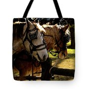 Carriage Ride Tote Bag