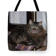 Cat On The Bar Tote Bag