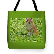 Chipmunck Standing     August Indiana Tote Bag