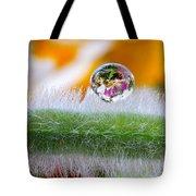 Drop Of Rain On The Pod Lupine Tote Bag