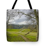 East Ridge Trail Spring Tote Bag