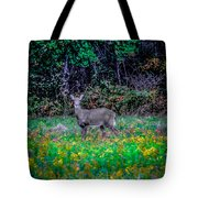 Evening Out Tote Bag