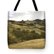 First Hill In Fall Tote Bag