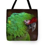 Great Green Macaw Ara Ambiguus Tote Bag